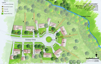 Rain Gardens Draft Plan